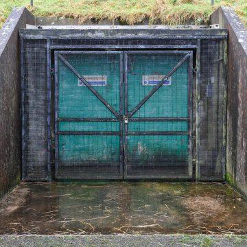 Bunker Buzz – February